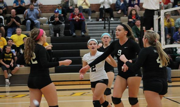 Volleyball has a disappointing end to a successful season