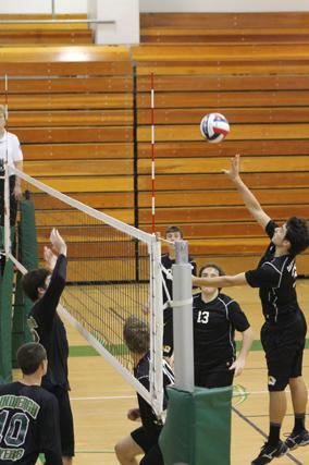 Volleyball prepares for districts