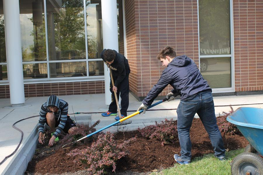Juniors+Davin+Heilich%2C+Josh+Nodurft%2C+and+John+Ellison+work+around+JB+mulching+for+service+learning.+
