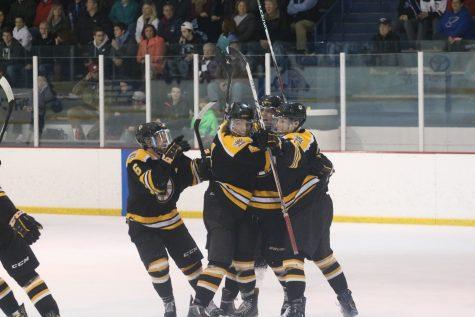 Hockey comes short of finals