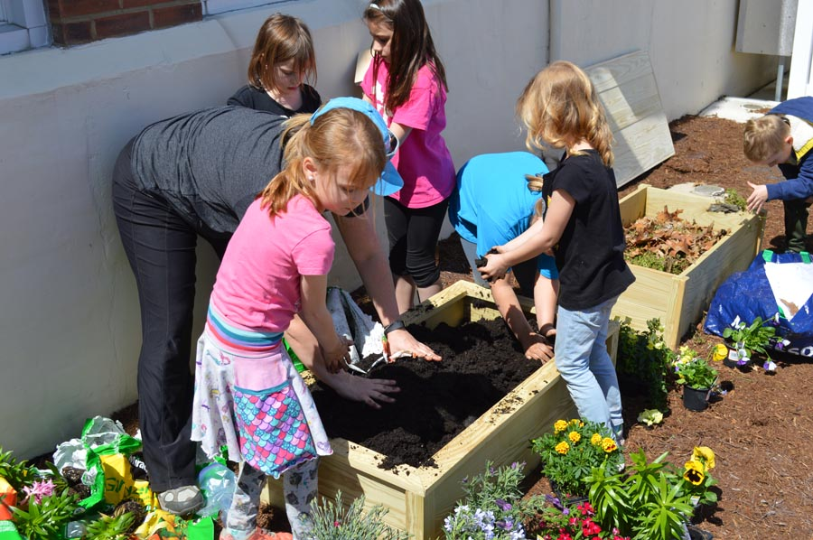 With the help from parent Jessica Moran, MOSIAC students  Emerald Murphy, Julie McQuilling, Nylah Rana, Addie Wright, Lia Emo, and Nolan Singler fill the woods projects with fresh soil.