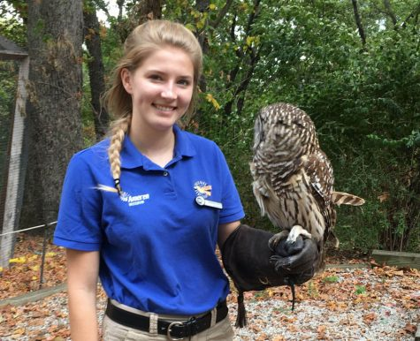 With an owl resting on her arm, Sabreena Leach (12) smiles for a picture while volunteering at the Wild Bird Sanctuary.