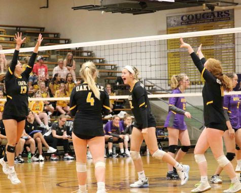 Emily Schellhase (12), Liv Klump (10), Tess McConnell (9), and Julia Klump (12) celebrate a point in a recent victory over Affton.