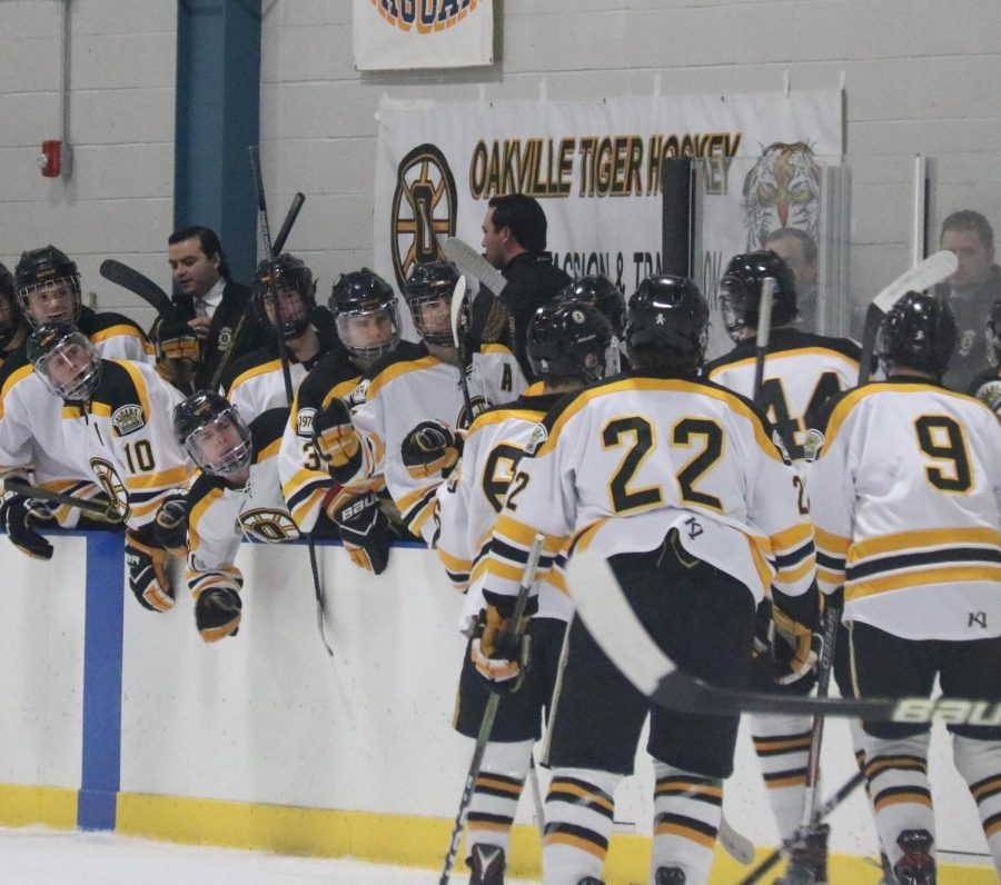 The+boys+hockey+team+celebrates+after+they+score+a+goal+against+John+Burroughs.+